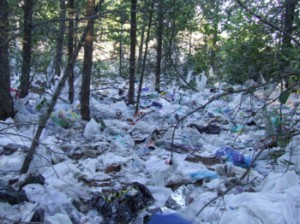 Государство с осторожностью принимает запреты на использование пластиковых пакетов
