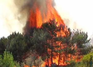 Россию ожидает огненное лето