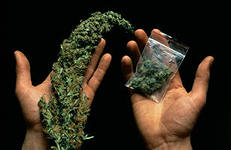 Туристам в Грузии разрешат курить марихуану