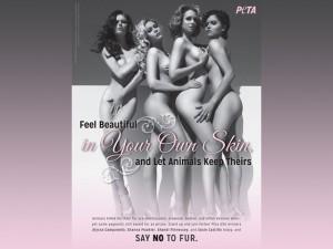 Четыре красивейшие девушки США разделись ради животных