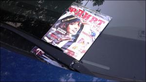 МВД проверит журналы «Флирт»