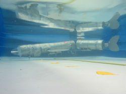 Изобретён глубоководный робот-карп