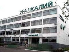 Более 6 тысяч человек просят освободить директора «Уралкалия»