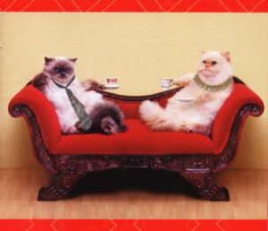 Фестиваль знаменитых котов в Интернете