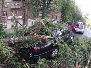 Ветер в Москве убил женщину