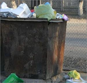 В Салтыковке в мусоре обнаружены тела пятерых младенцев