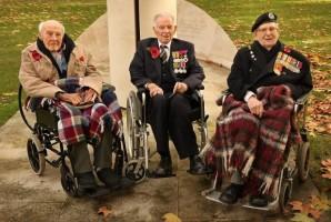 День перемирия в Европе ознаменовался церемониями дани павшим в войнах