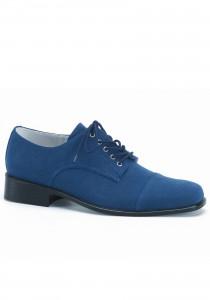 Синие замшевые туфли короля рок-н-ролла будут проданы в аукционе в Соединенных Штатах