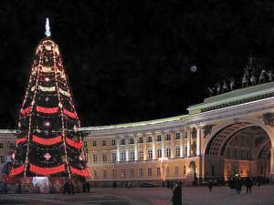 Жители Санкт-Петербурга выберут новогоднюю елку для Дворцовой площади
