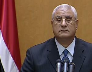 Временный президент Египта принял решение о системе голосования