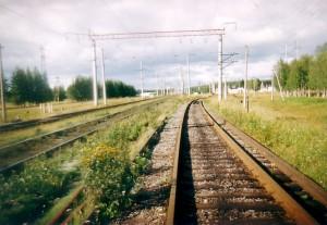 Поезд сбил глухонемого мужчину в Подмосковье