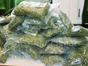Замглавы отдела полиции в Питере задержан за торговлю наркотиками
