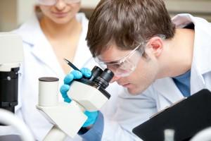 Ученым известно - белок звенит, подобно колокольчику