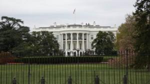 На брифинге стажер Белого дома упала в обморок