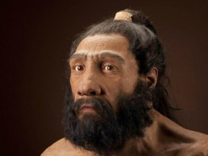 Ученые исследовали закаменелые фекалии неандертальцев и выяснили, что они ели