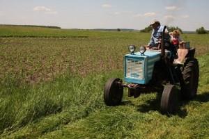 Фермерам новгородской области выделили 13 млн. рублей из бюджета области