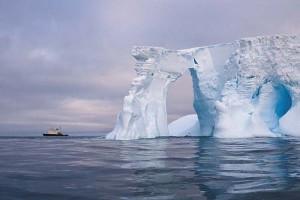 Тысячи живых организмов найдены в Антарктиде