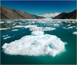 Ученые обнаружили 300 мест выброса метана в Северном Ледовитом океане