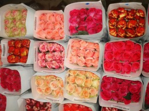 Flowers-Sib.ru вышла на рынок доставки цветов в Хабаровске
