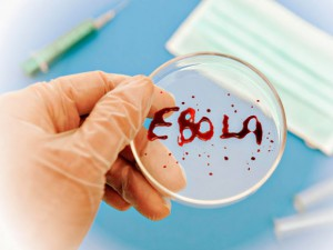 Лихорадка Эбола настигнет Великобританию и Францию вероятно в конце октября