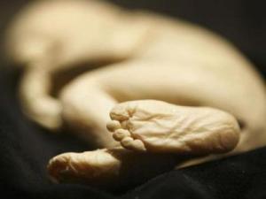 Полиция Канады арестовала женщину, хранившую останки младенцев
