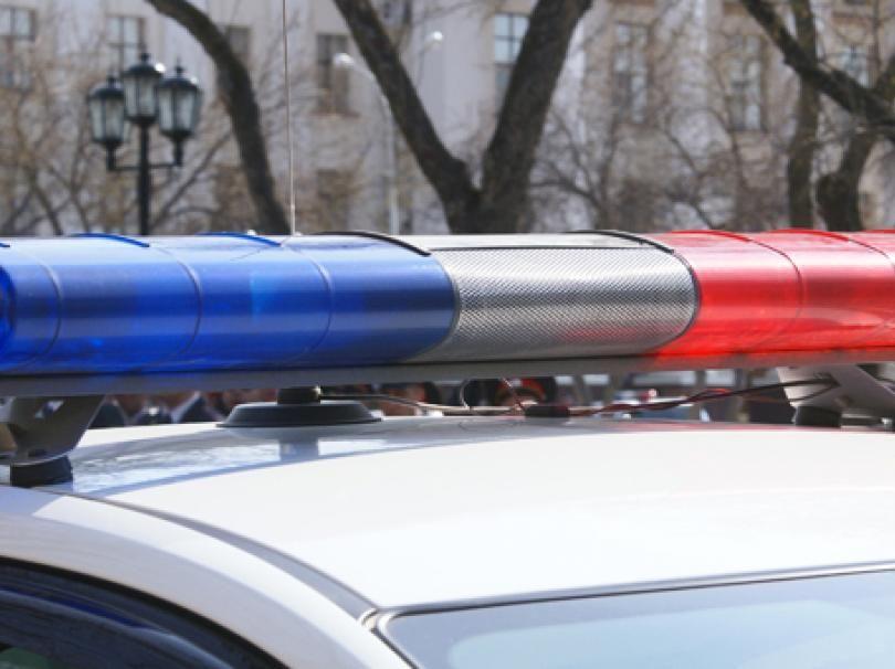 На дорогах Новгородской области могут появиться муляжи инспекторов ДПС
