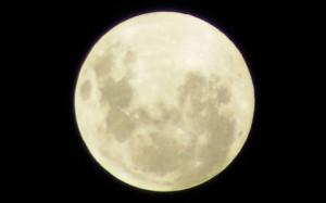 Робот закопает на Луне волосы землян