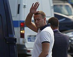Навальный и оттенки внутренней политики