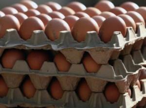 Неизвестные в столице закидали яйцами правозащитников