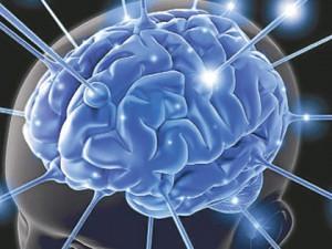 Ученые научились восстанавливать потерянные воспоминания