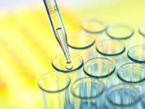 Российскую вакцину против лихорадки Эбола начнут тестировать весной на приматах