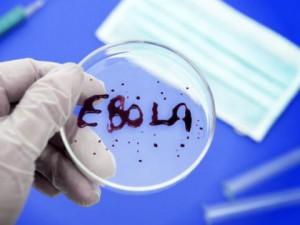 В России сорок человек проверили с подозрением на Эболу
