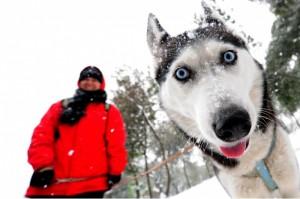 Собаки могут различать злое или доброе выражение лица своего хозяина