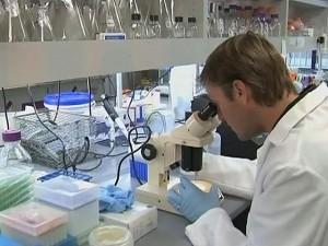 Ученые из Томска научились по ДНК определять где родился человек