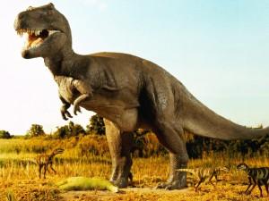 Ученые утверждают, что среди динозавров могли быть наркоманы