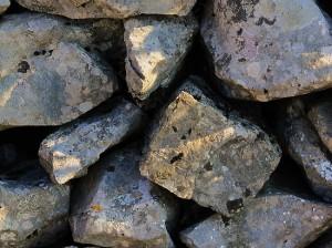В Ленобласти второклассники закидали камнями экс - узника концлагеря