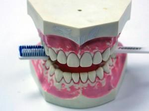 Детская стоматология в «32 Дент» стала еще доступнее