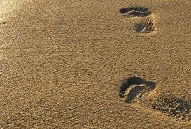 Ученые утверждают, что в пляжном песке живет множество опасных бактерий