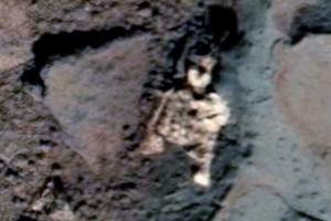 В Сеть попало видеоролик о погибшем на Марсе существе