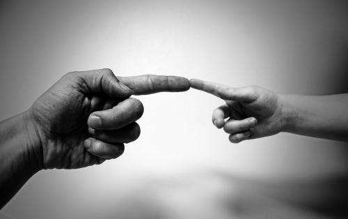 """Профессор Американского еврейского университета Калифорнии Зайони Зевит уверен, что Адам """"отдал"""" для создания Евы вовсе не ребро, а бакулюм - кость, которая после этого исчезла как рудимент у потомков Адама."""