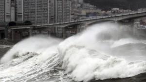 Жителям Владивостока рекомендуют запастись водой и пищей из - за надвигающегося тайфуна