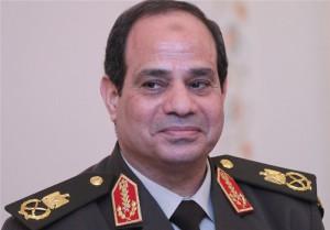 МИД Египта поддержа