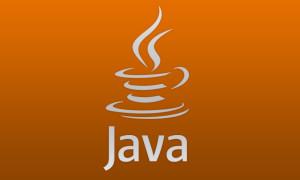 Java, её функции и особенности