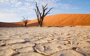 Мировой банк вложит миллионы, чтобы защитить водные ресурсы Земли