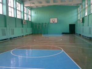 В Саратове грядет комплексная проверка спортивных учреждений