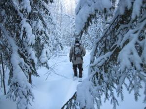 Во время охоты погиб гендиректор подразделения Уральского горно-металлургического комбината