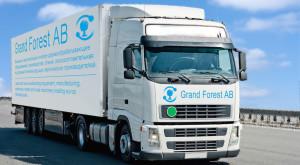 Grand Forest AB: выгодное сотрудничество и низкие цены