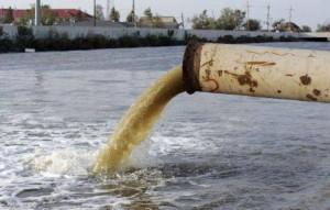 Выброс промышленных отходов повлек массовый мор рыбы в водоемахБашкирии