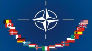 Германия препятствует размещению войск НАТО в Польше, чтобы не провоцировать РФ