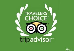 Гостиница «Бета» – победитель конкурса TripAdvisor «Traveller's Choice» 2016 года